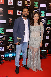 Bollywood Celebrities on the Red Carpet Of Zee Cine Awards 2017 Exclusive 101.JPG