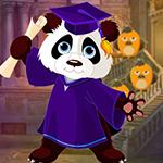 G4K Graduate Panda Escape