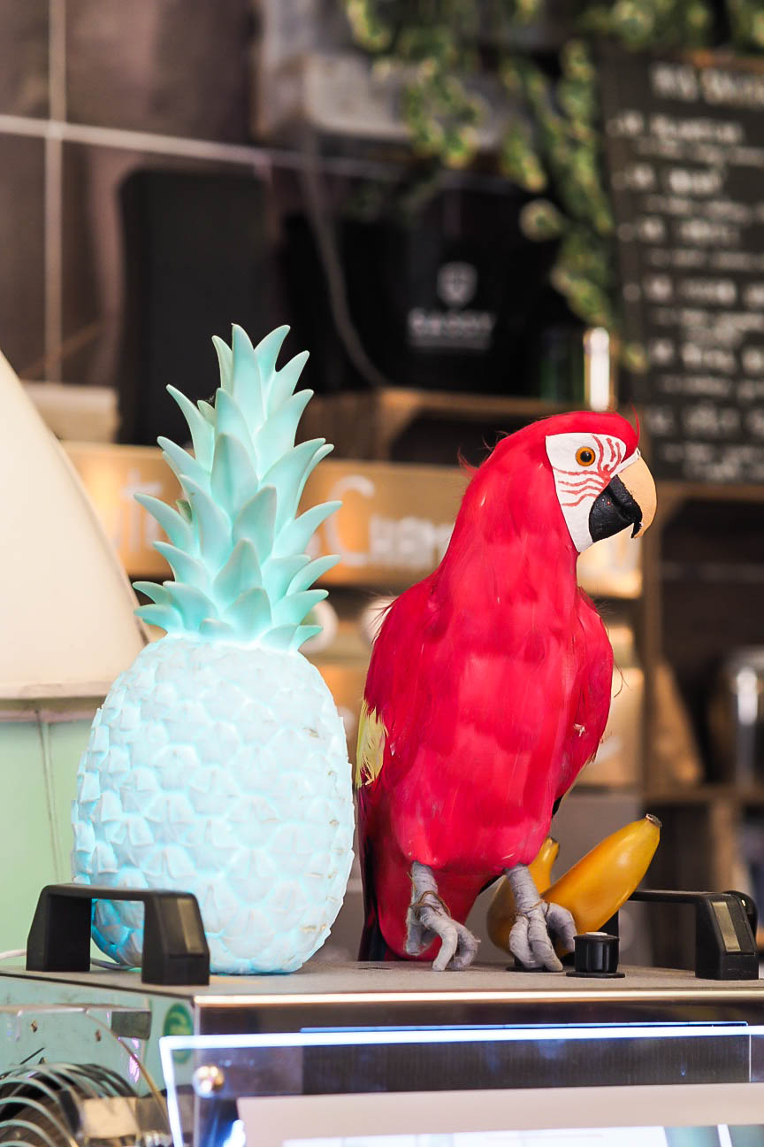 Parrot lamp and pineapple lamp