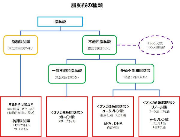 脂肪酸の種類