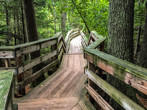 Boardwalk to Brownstone Falls and Tyler Forks on the Doughboy's Trail - Copper Falls State Park
