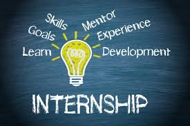 Online Human Rights Program Internship 2021 by WILPF: Apply by January 6