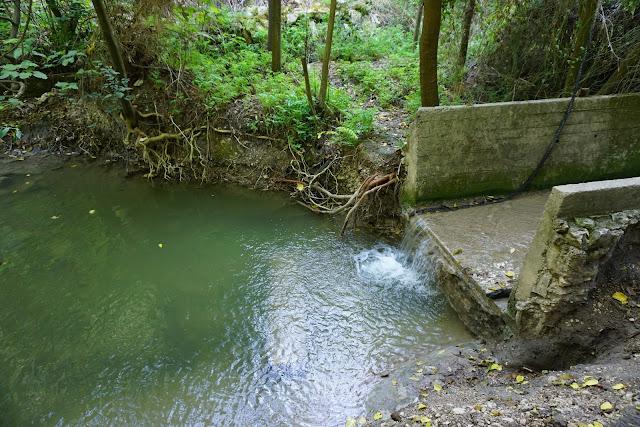 סכר  מים בנחל השופט
