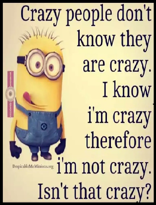 Crazy people don't know they are crazy. I know I'm crazy therefore I'm not crazy. Isn't that crazy? | #quotes #minions #relatable #funny