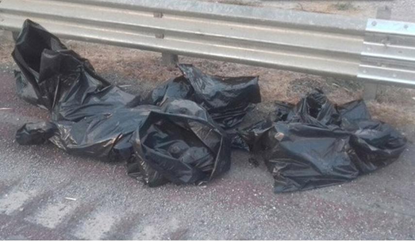 Encuentran 6 bolsas con restos humanos en la autopista del Sol