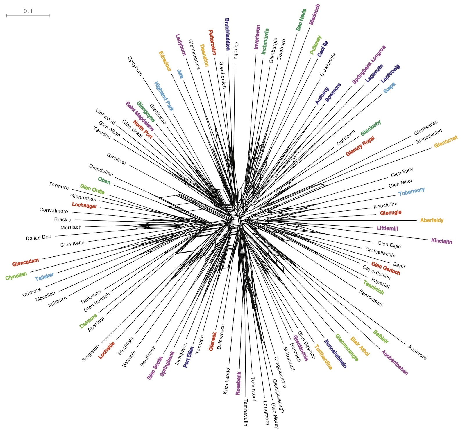 The Genealogical World Of Phylogenetic Networks Network