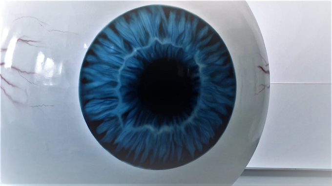 Can vision be restored with retinal implants? | Artificial retina implants
