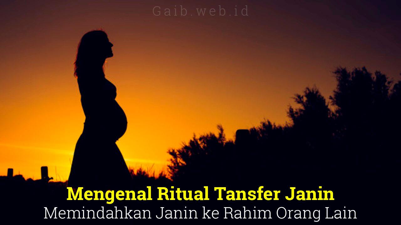 Mengenal Ritual Tansfer Janin, Memindahkan Janin ke Rahim Orang Lain