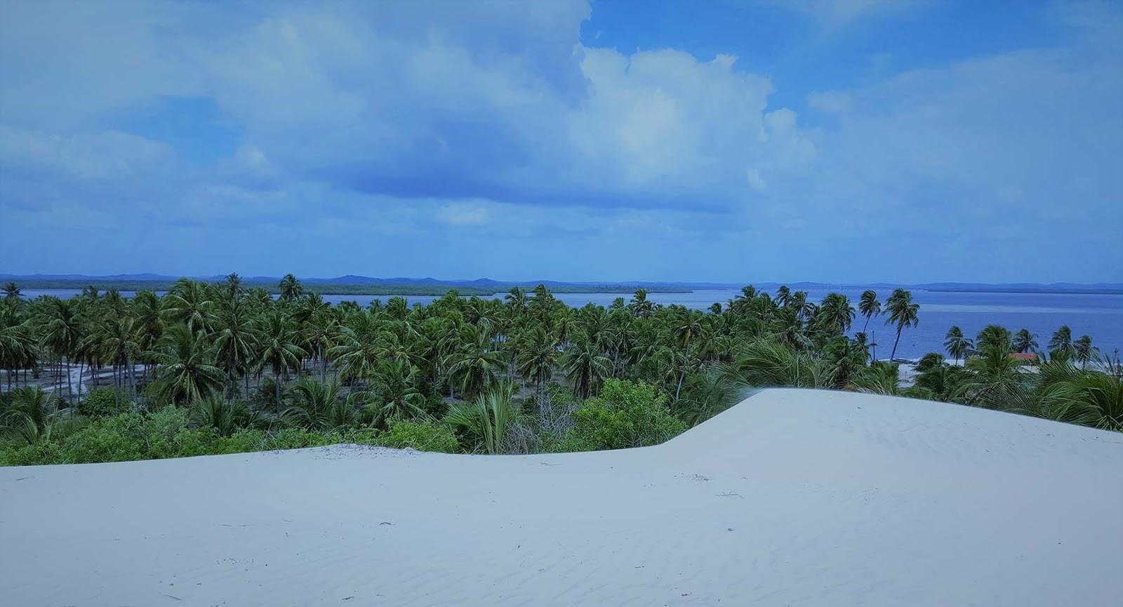 Passeio de buggy pelas dunas de Mangue Seco.