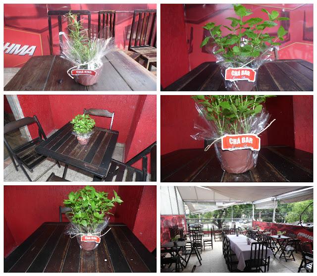 Centros de Mesa Chá Bar - Ervas