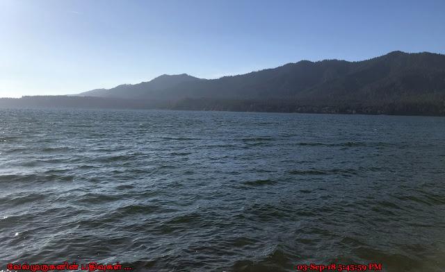 Washington Lake Quinault