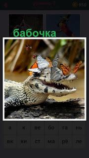 655 слов лежит крокодил вокруг которого бабочки кружатся 7 уровень