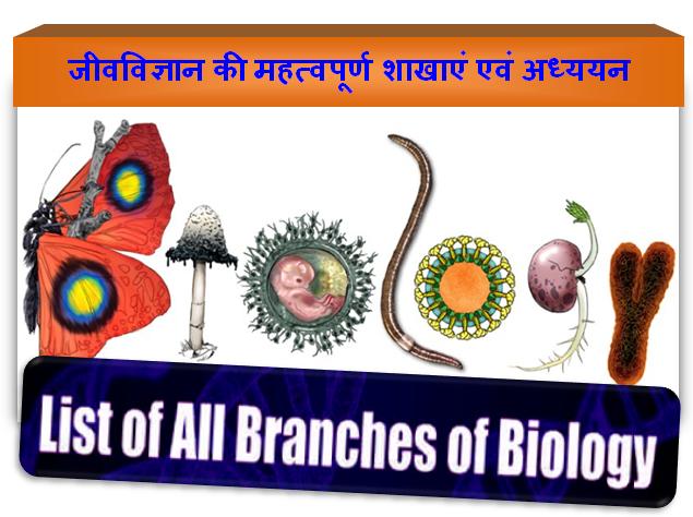 List of Important Branches in Biology | जीवविज्ञान की महत्वपूर्ण शाखाएं एवं अध्ययन