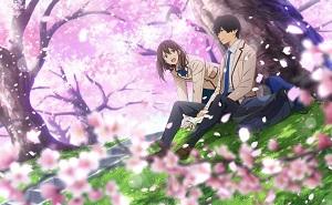 Kimi no Suizou wo Tabetai 2018 HD 1080p subtitulado