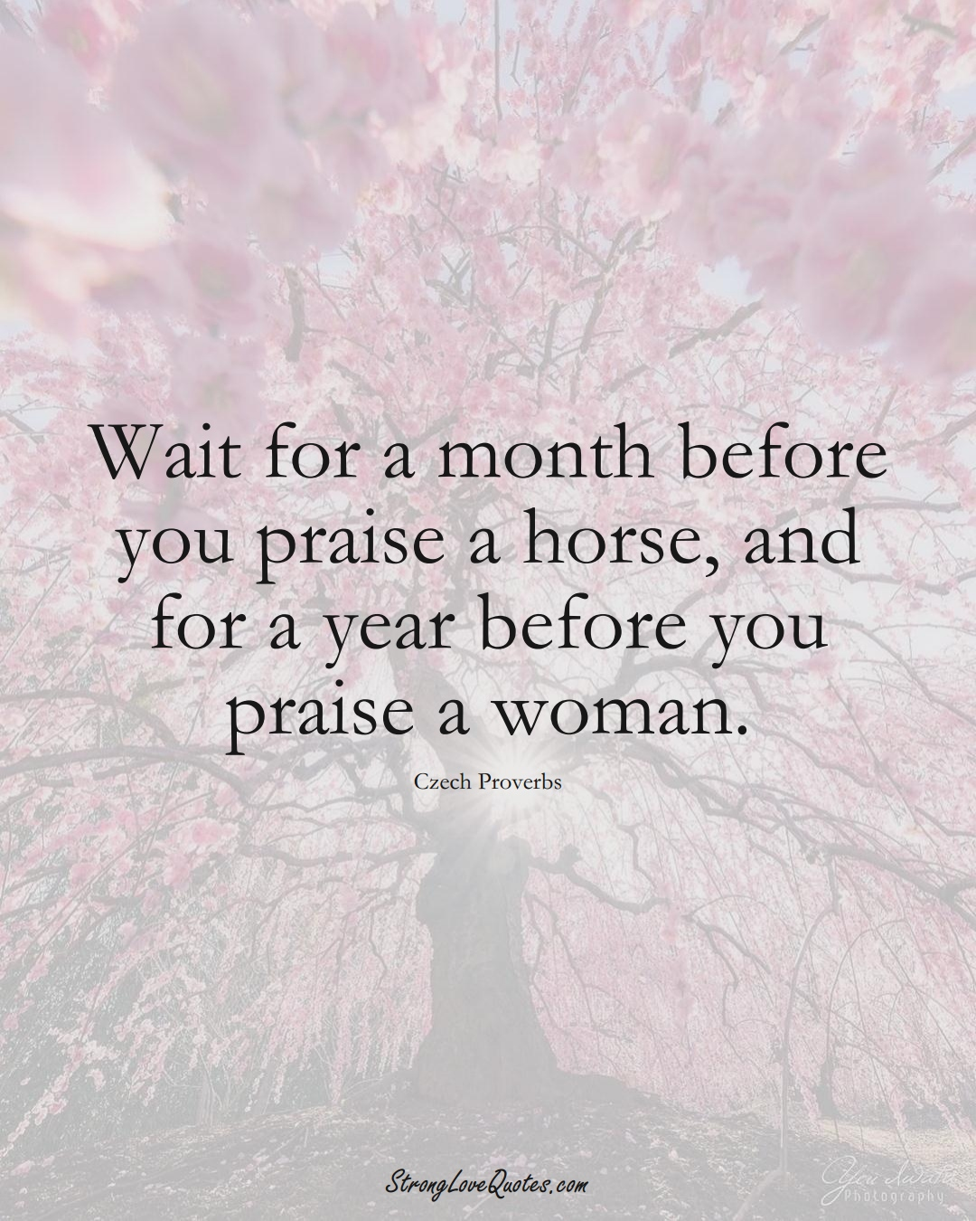 Wait for a month before you praise a horse, and for a year before you praise a woman. (Czech Sayings);  #EuropeanSayings
