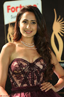 Pragya Jaiswal Sizzles in a Shantanu Nikhil Designed Gown  Exclusive 031.JPG