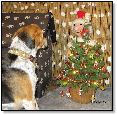 Beagle Emma schmückt mit dem Wichtel den Weihnachtsbaum