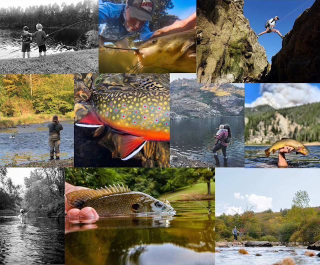 ORVIS -  20 Days in September  Photo Contest