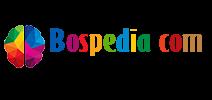 Review Bospedia Blog personal bertema Pendidikan terbaik