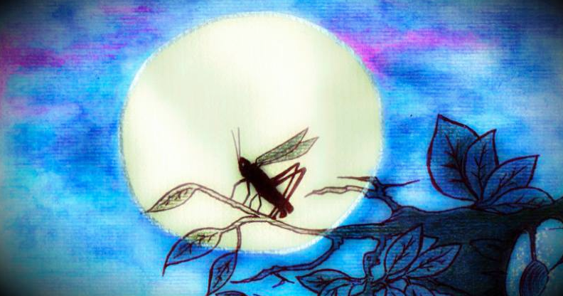 The mystical sound of the cricket and astral projection practices