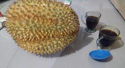 https://www.mysomer.com/2020/02/efek-samping-makan-durian-setelah-minum-kopi.html