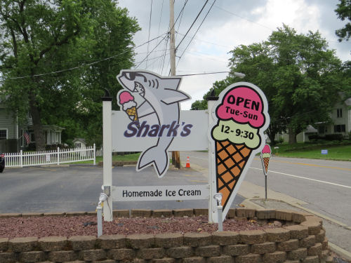 Shark's Ice Cream