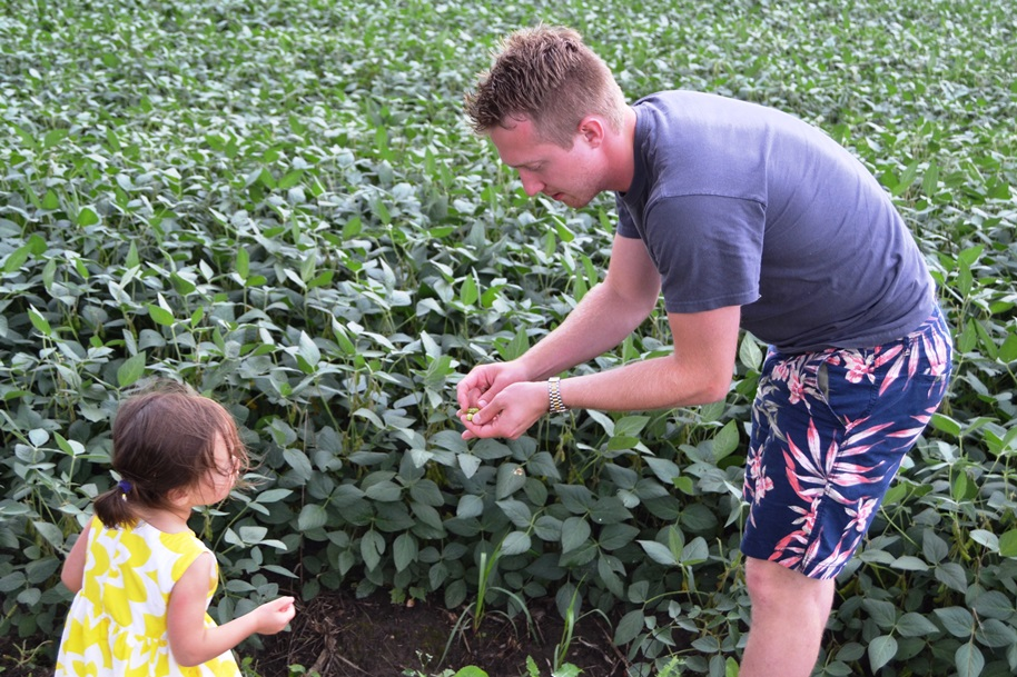 kids picking soybeans