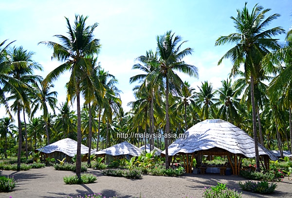 Maumere Coconut Garden Beach Resort