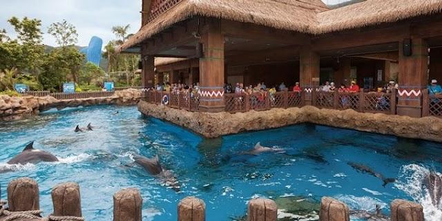 Explore the 10 largest aquariums in the world