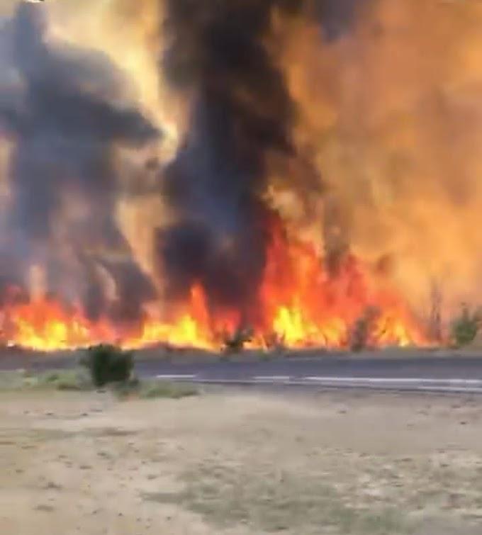 Vídeos: Prefeitura dar apoio aos bombeiros a apagar fogo próximo a bairro em Flores