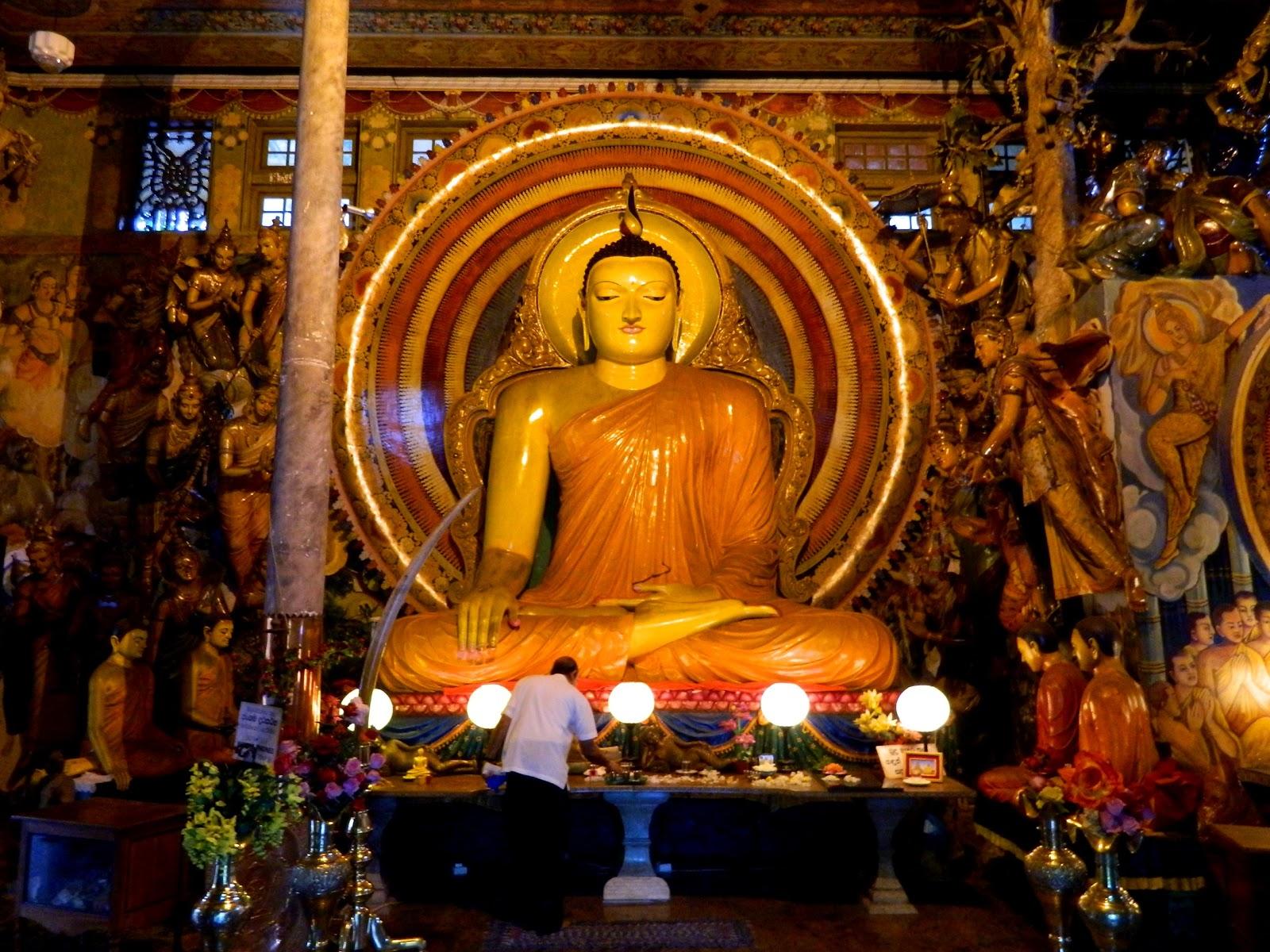 Resultado de imagem para Viagem à Índia – Nos Passos de Buda