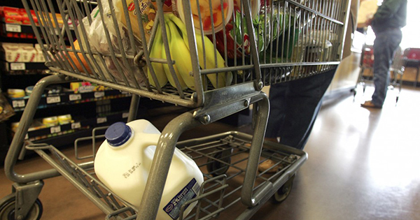 Cart full of groceries from food stamp recipient