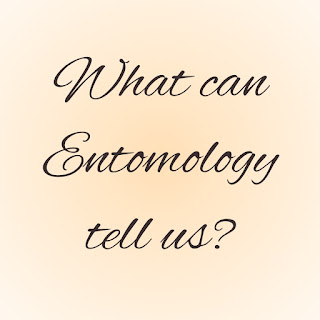 what can entomology tell us ?