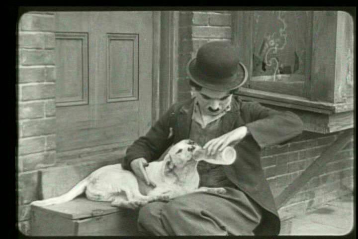 Charles Chaplin Frases A Vida é Uma Peça De Teatro: Blogg Do Teosofista: A Vida é Uma Peça De Teatro Que Não
