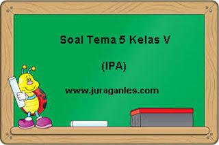 Contoh Soal Tematik Kelas 5 Tema 5 Mapel IPA dan Kunci Jawaban