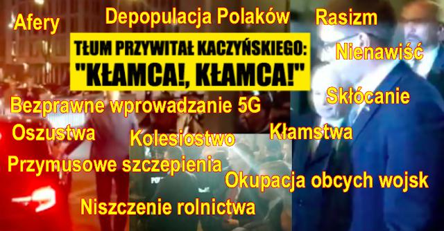 kaczyński kłamca i oszust