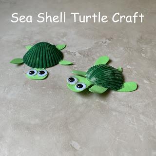 Sea Shell Turtle Craft