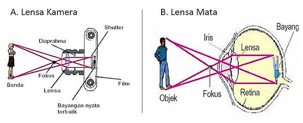 alat optik mata