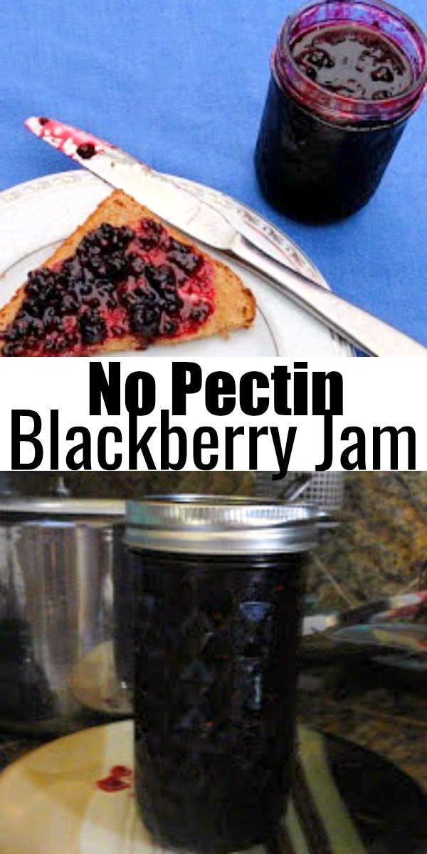 Homemade Blackberry Jam without Pectin recipe is a favorite way to preserve blackberries from Serena Bakes Simply From Scratch.