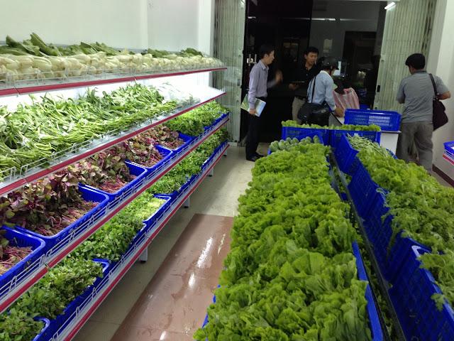 Làm thế nào để mở cửa hàng rau sạch đạt chuẩn tiết kiệm chi phí