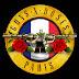 Konser Guns N' Roses di Prancis.