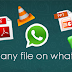 Whatsapp Now Allow Users Share All Types Of File With Friends