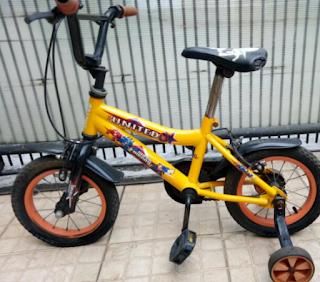 5 Rekomendasi Sepeda Anak Roda 4 Berkualitas Untuk Si Kecil
