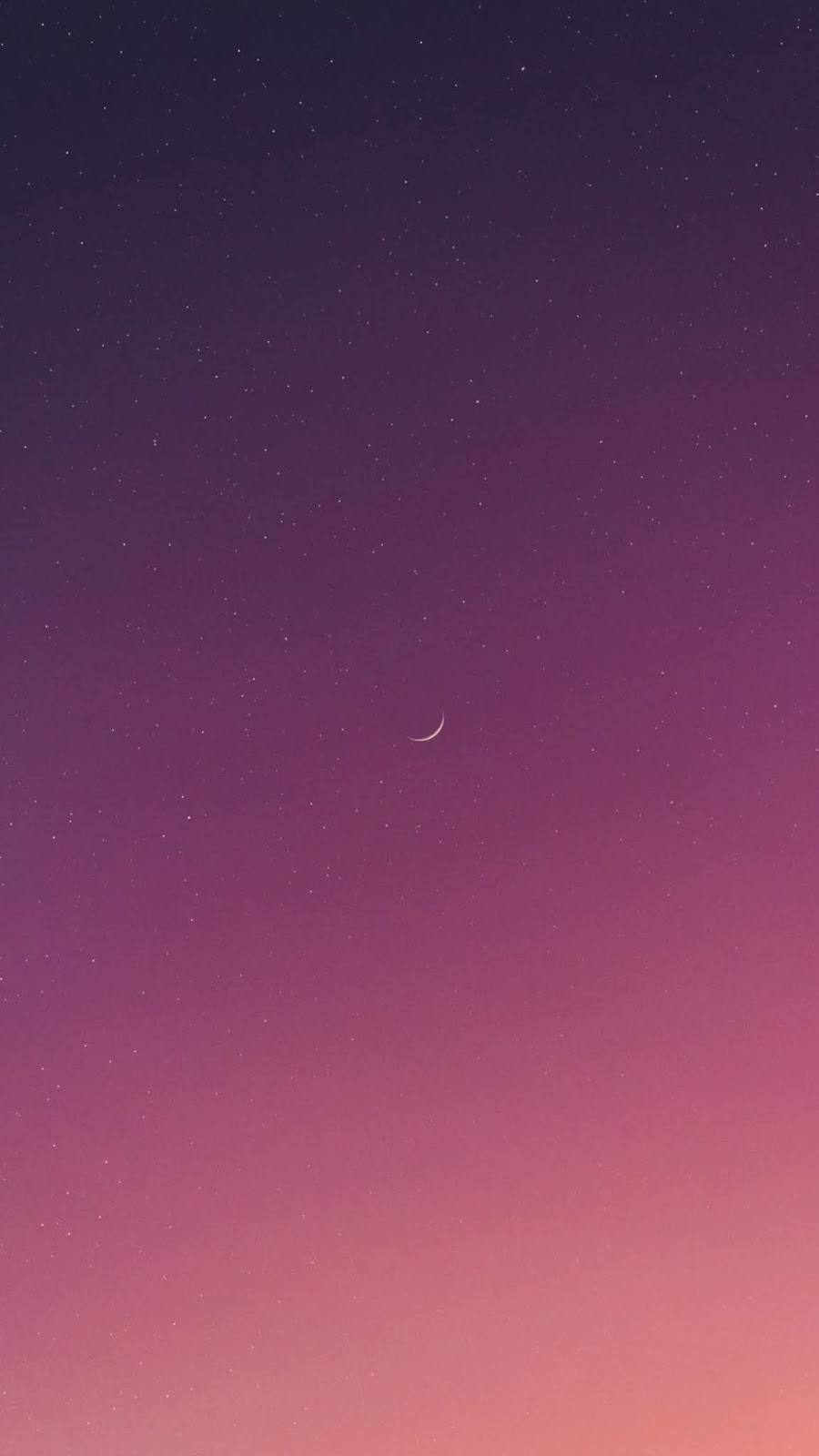 Enchanted night sky