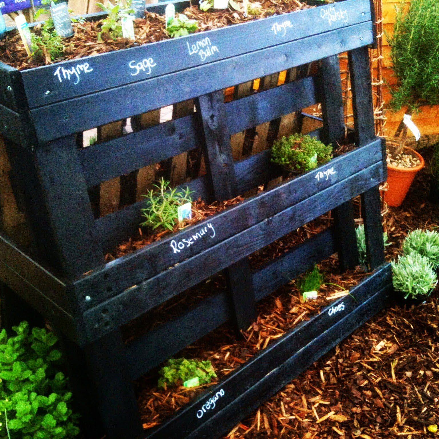 Pallets have uses in small spaces, think clever, think space #lifeonpigrow