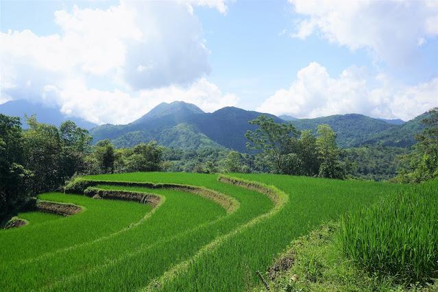Vietnam Ha Giang trekking