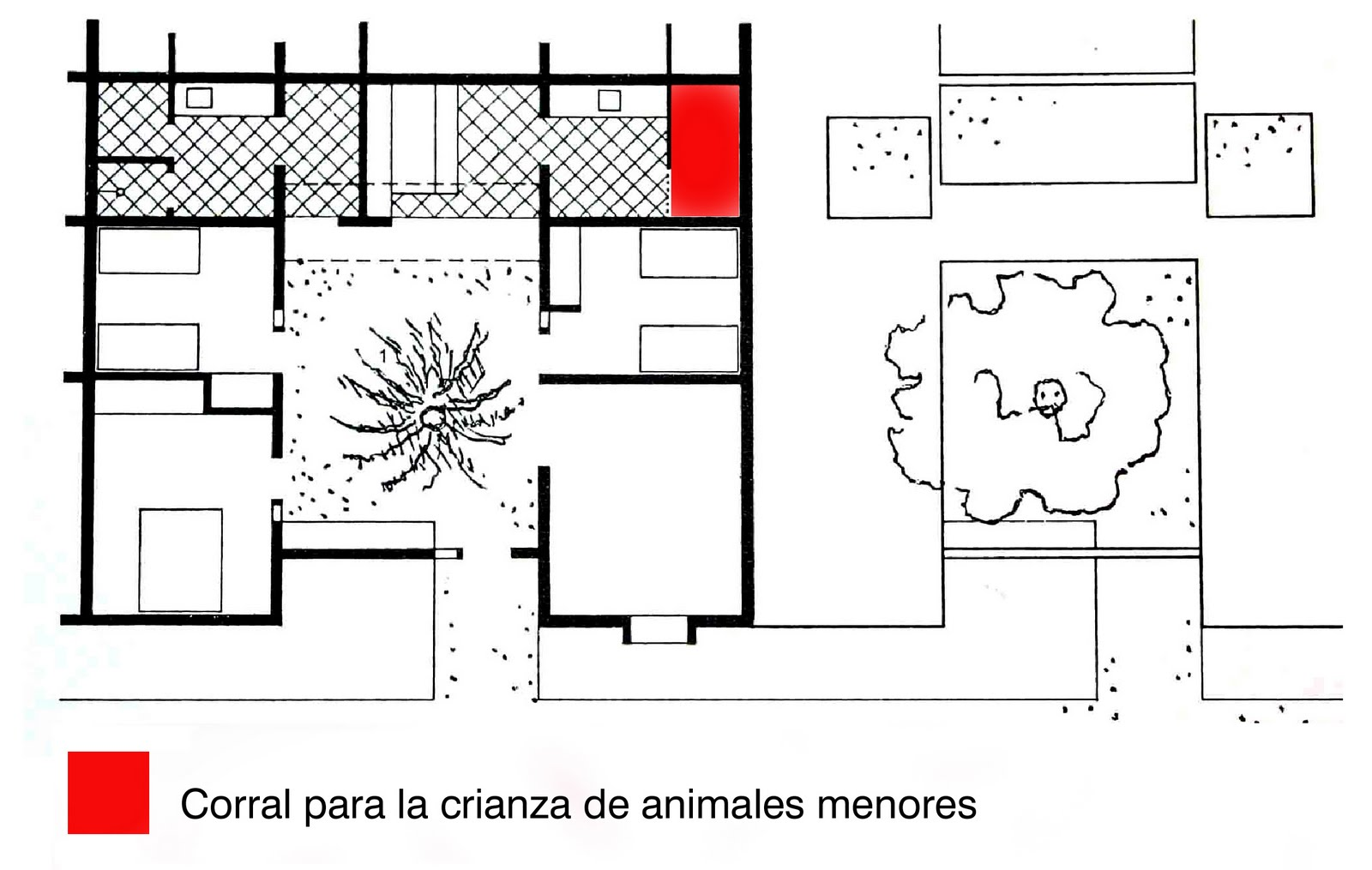 La Forma Moderna En Latinoamerica Casas Patio