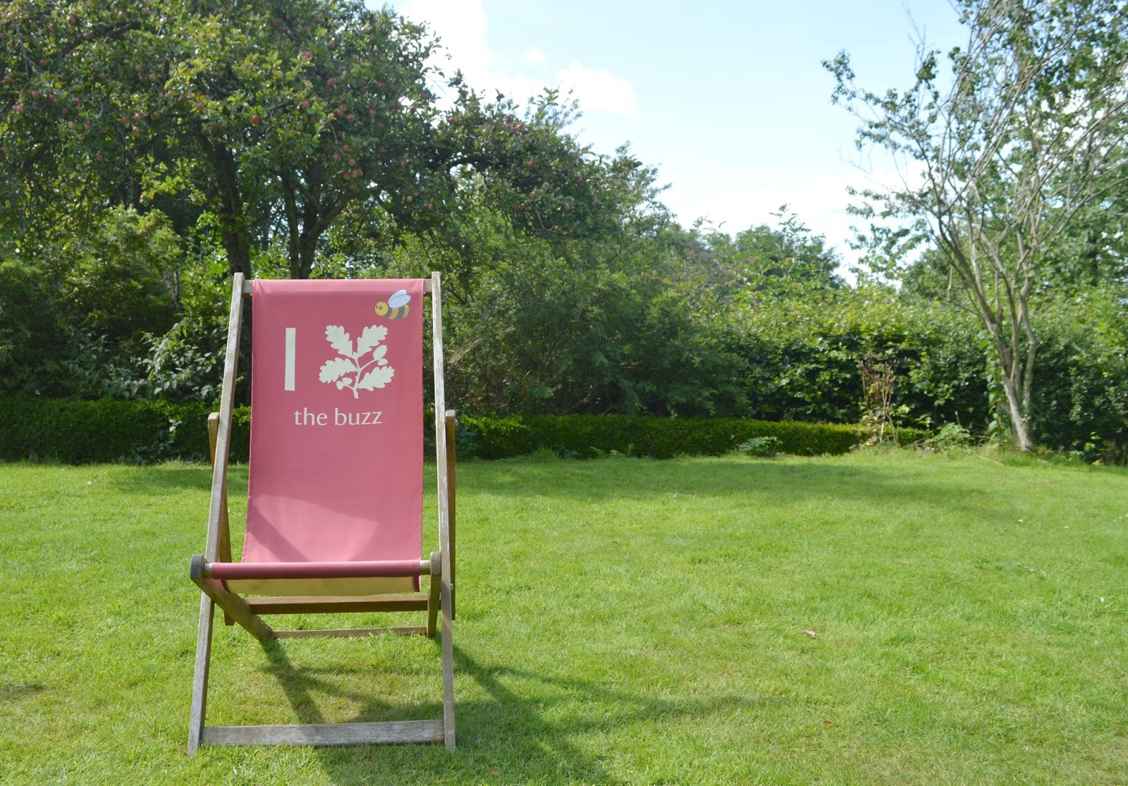 National Trust Cherryburn - Deck Chair