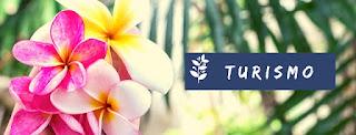 La belleza de Las Grutas con sus flores
