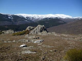 Pradera a 1600 m